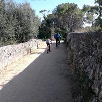 Restaurat el camí d'Ortoll – però amb mancances!