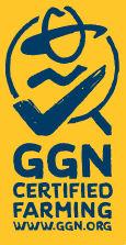 GGN Logo.jpg