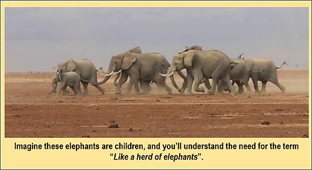 Herd of Elephants2.png