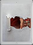 BookBrushImage-2021-4-25-17-3057.png