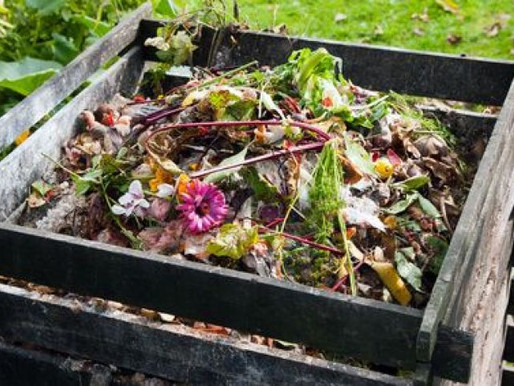How to Create Your Own Compost Easily