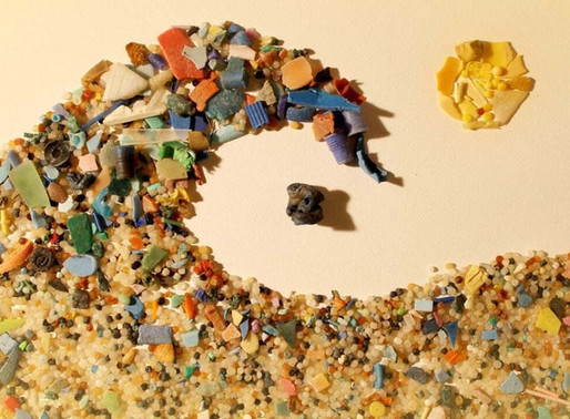 Microplastics Are Everywhere Around You