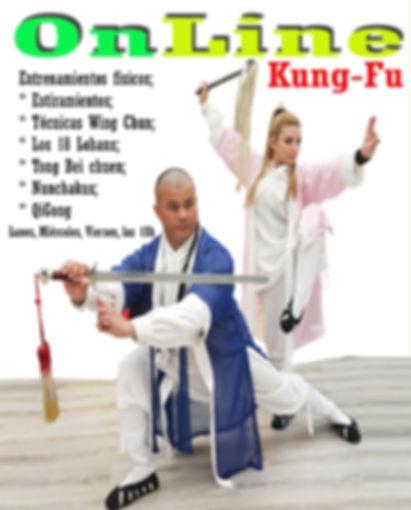 Online Kung Fu.jpg