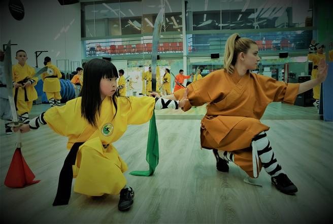 Shaolin Curso Wu Xing Quan - Master Senn