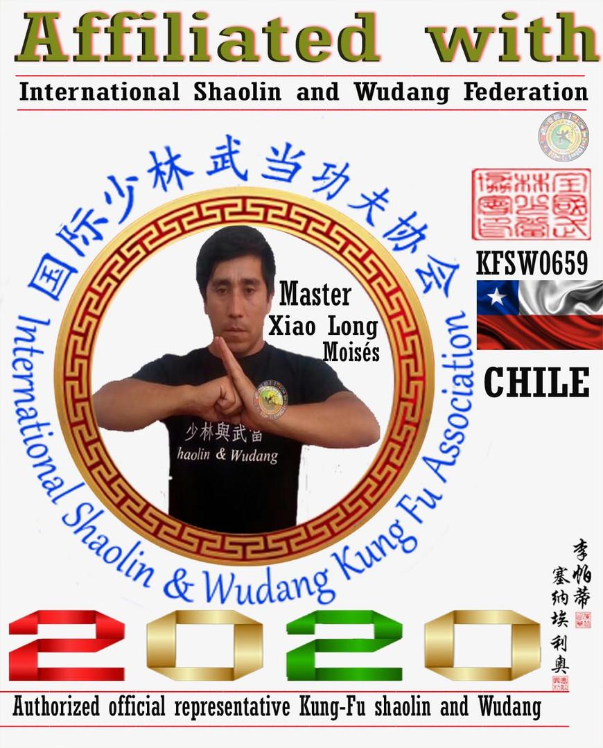 9 Representantes Oficial Shaolin y Wudan