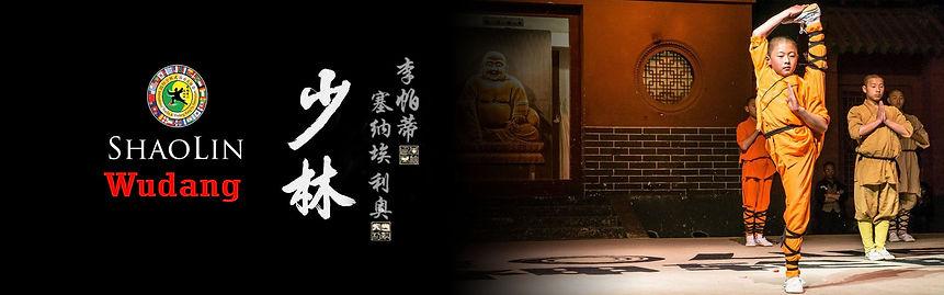 shaolin and wudang kungfu jpg.jpg