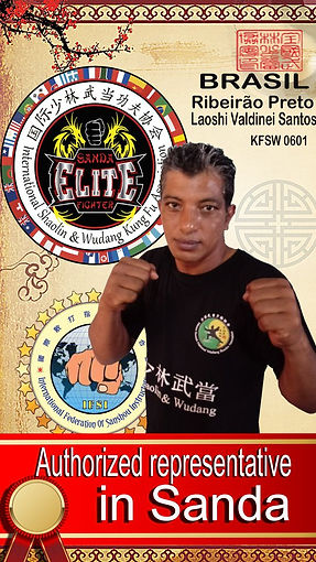 Sanda Boxe Chines (6).jpg