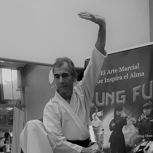 CURSOS Y CLASES DE KUNG FU SHAOLIN Y WUD