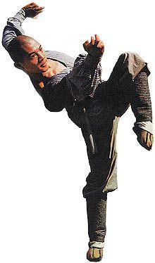 Kung Fu shaolin y Wudang Grand Master se