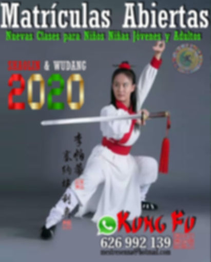 Clases de Kung Fu Infantil.jpg