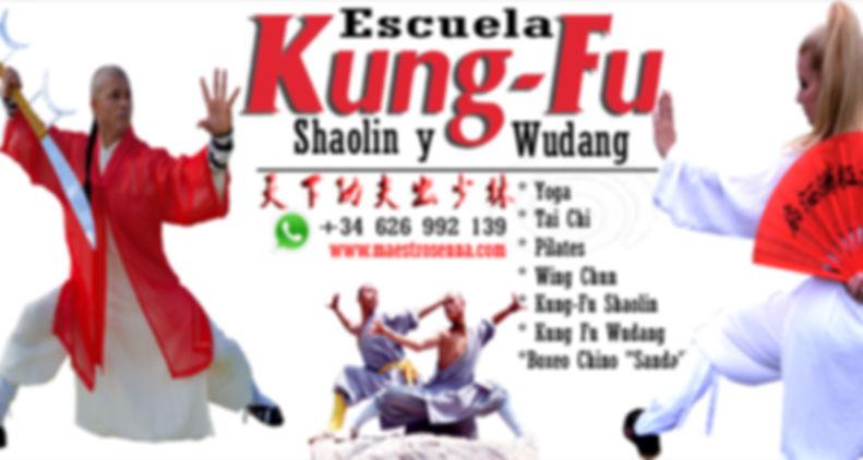 Escuela kung fu shaolin y wudang