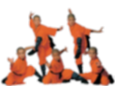 Shaolin y Wudang - clases y cursos .png