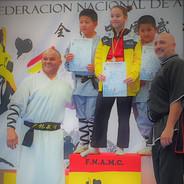 IV International martial arts , Azuqueca