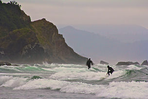 Surfers by Christy Karras
