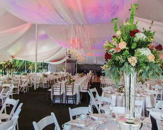 Meet Canopies Events with Distinction