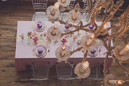 Erika Dufour for Debi Lilly/A Perfect Event and Windy City Linen