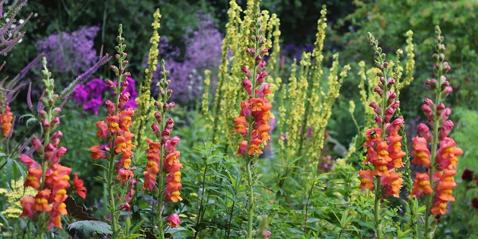August Garden Talk