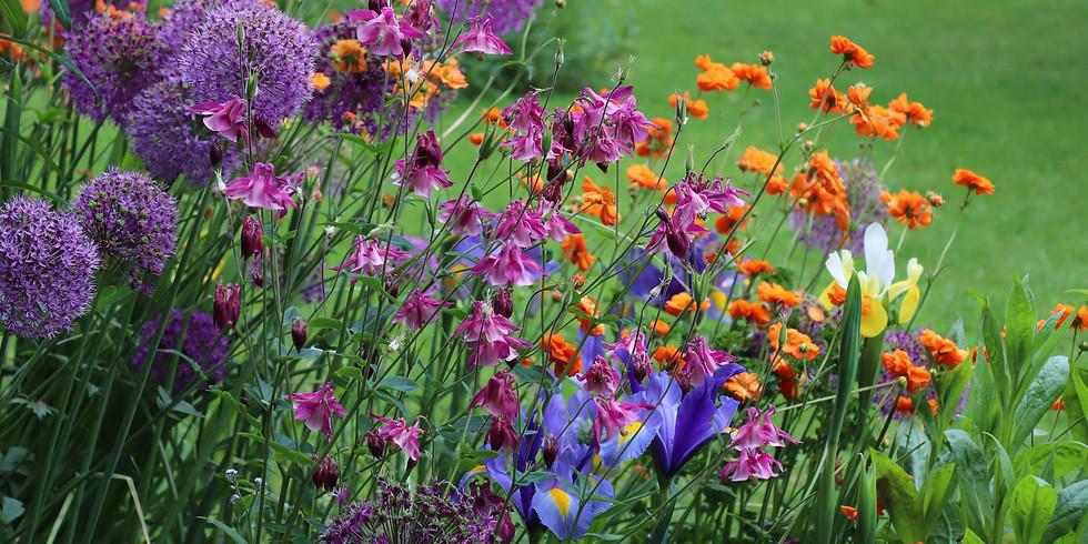1st Sunday in June Garden Talk