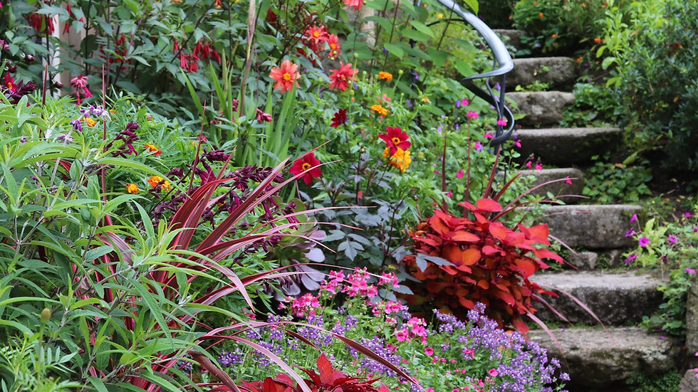 Garden Entry