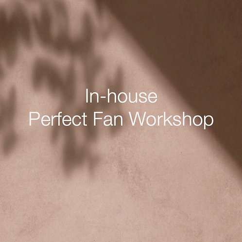 Perfect fan workshop at BLANCO Academy