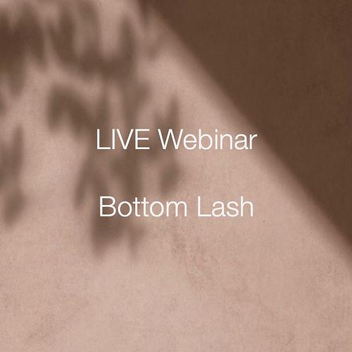 BLANCO Bottom Lash Webinar