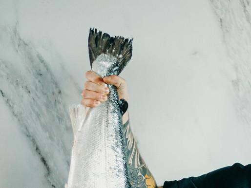 GO FISH, GO LOCAL