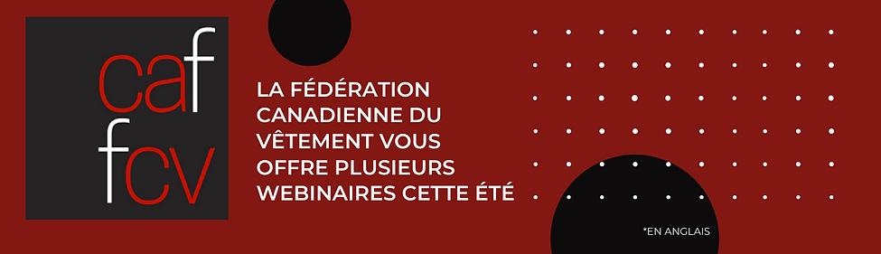 Accueil - Site Web VQ.png