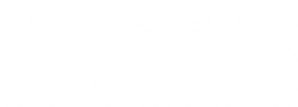 Pattern_Barokk_Stor_Hvit.png