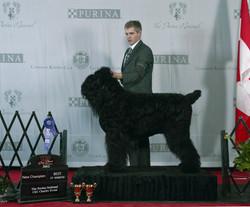 Rick-Purina-National-Best-of-Winners