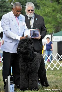 Eli-Best-Puppy-2010-BRTCA-Nationals