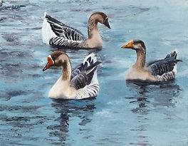 Ducks Etsy.jpg