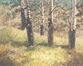 blacktail deer plateau Web.jpg