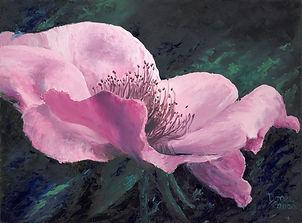 Pink Rose Etsy.jpg