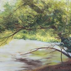 Lake Oolagah