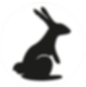 BLACK RABBIT COIRCLE LOGO.png