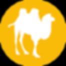 icon-kameel.png