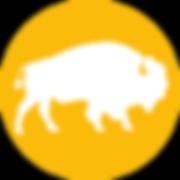 icon-bizon.png