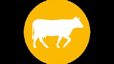 icon-koe.png