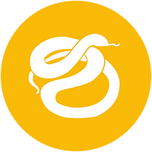 icon-python.png