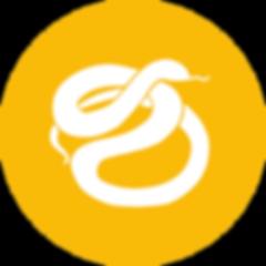 icon-python.png