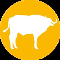 buffel-1.png