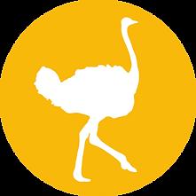 icon-struisvogel.png