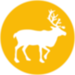 icon-eland.png