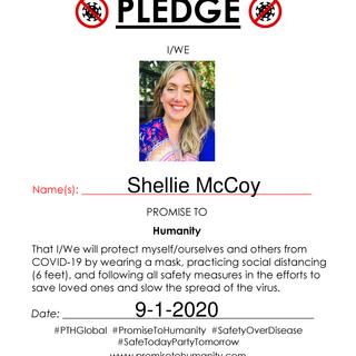 Pledge (Original)-1960001.png