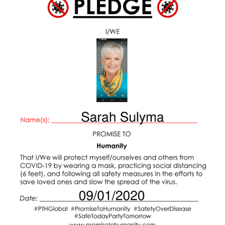 Pledge (Original)-2090001.png