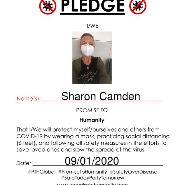 Pledge (Original)-1750001.png