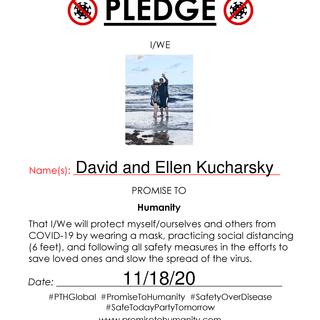 Pledge (Original)-80001.png