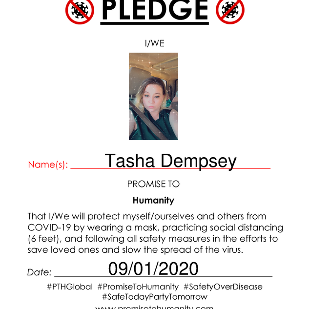 Pledge (Original)-1820001.png