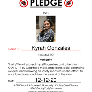 Pledge (Original)-30001.png