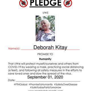 Pledge (Original)-1840001.png